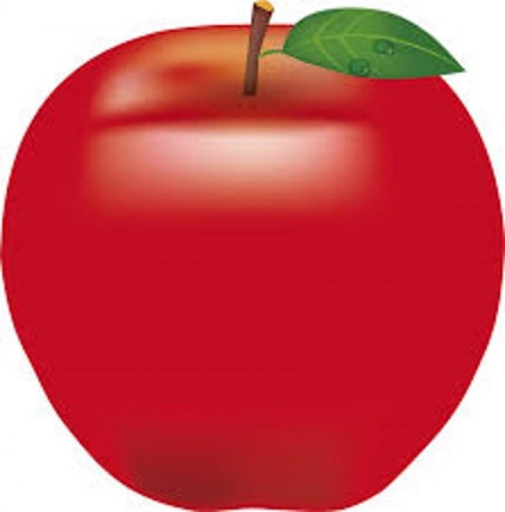 西宮北口 糖尿病週間④ リンゴから糖尿病の薬! さらに心臓にも良い効果が認められた! -